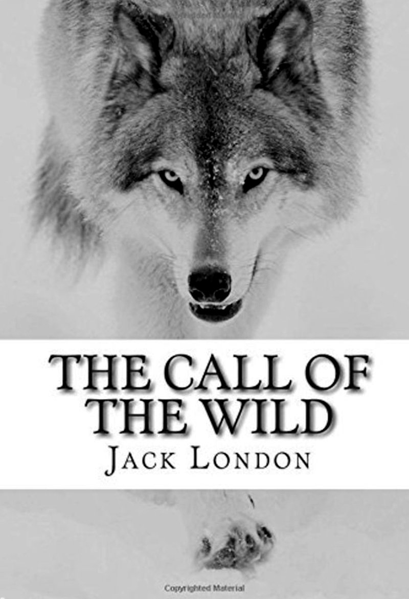 a dog named buck in the novel call of the wild by jack london The call of the wild is a short adventure novel by jack london  the call of the wild is a short adventure novel by jack  the novel is a dog named buck.